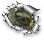 Ripped Torn Metal Design With Cute Sloth Motif External Vinyl Car Sticker 105x130mm